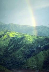Costa Rica.  Kalhuggna berg 1.